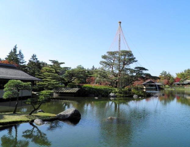 A11.11.22-01  日本庭園01.jpg