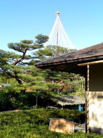 A11.11.22-01  日本庭園11 bbb.jpg