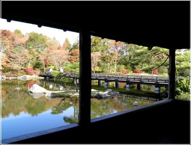 A11.11.22-01  日本庭園51 xx.jpg
