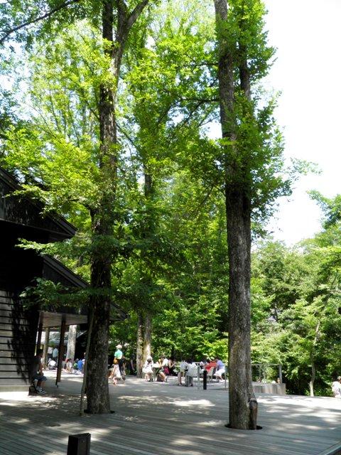 A12.08.09-51 軽井沢へ44.jpg