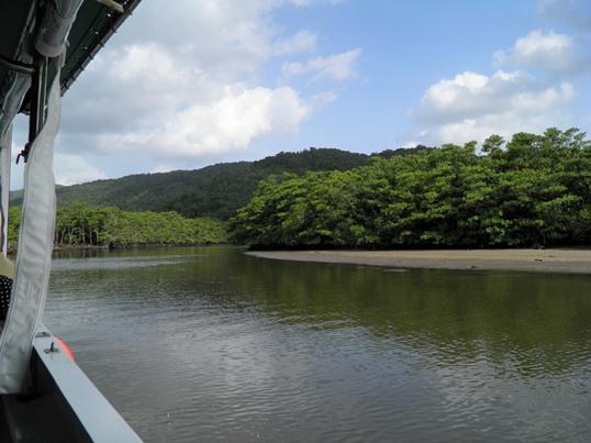 A13.10.16-21 仲間川19.jpg
