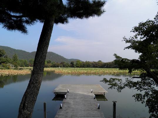 A13.11.02-71 大覚寺51.jpg