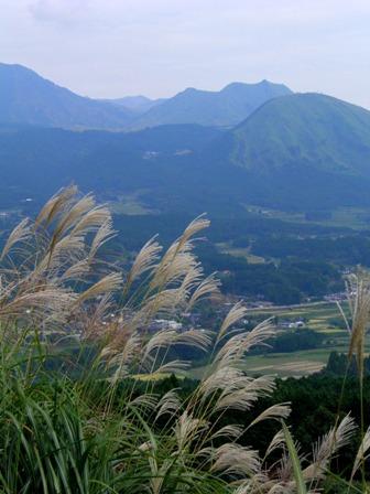 10.10.12-022  俵山ススキ2.jpg