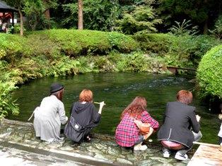 10.10.12-045  白川水源5.jpg