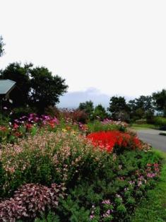 10.10.13-154  花公園4A.jpg