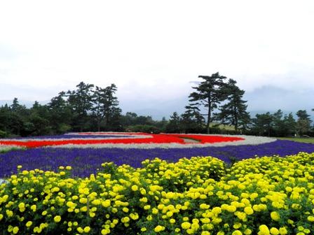 10.10.13-155  花公園5.jpg