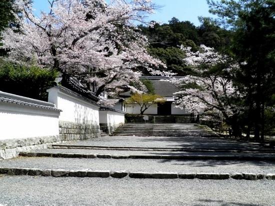 11.04.11-41  南禅寺06 A (550x412).jpg