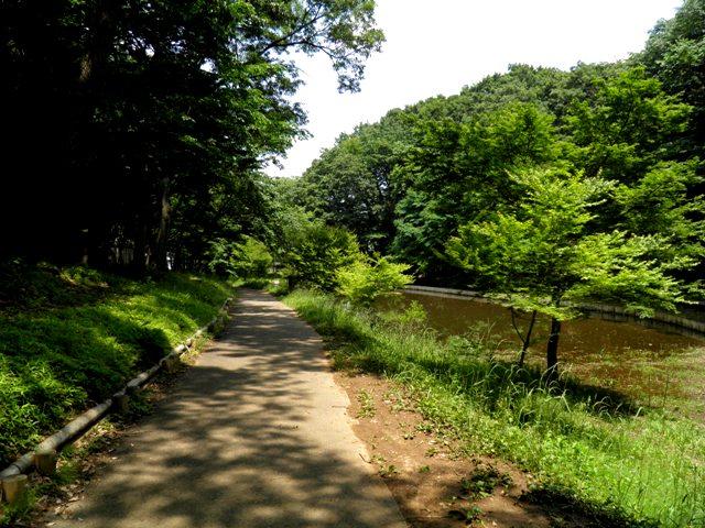 21-041 公園 21.jpg
