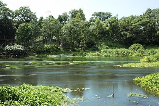 800px-Kakita_River_20120819[1] (538x358).jpg