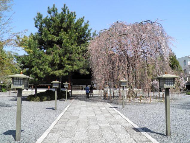 A13.04.05-68  釈迦堂23.jpg