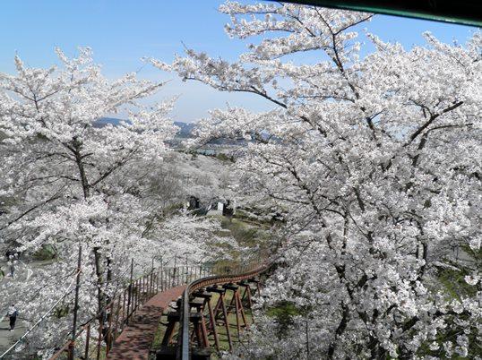 A14.04.15-11  船岡城24.jpg