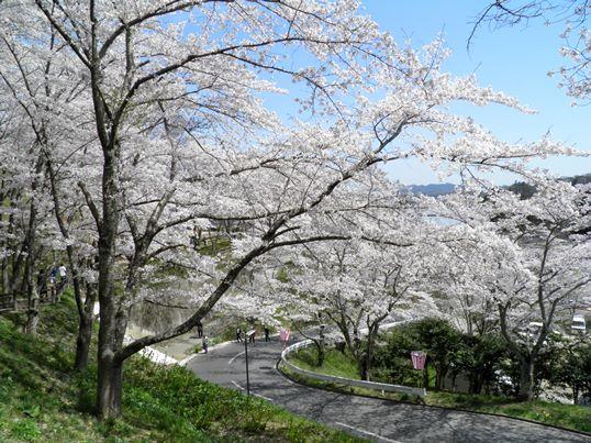 A14.04.15-11  船岡城68.jpg