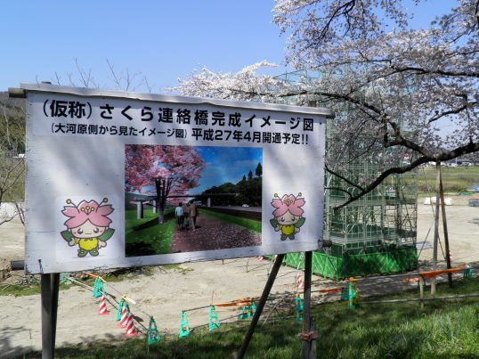 A14.04.15-31  白石川24.jpg