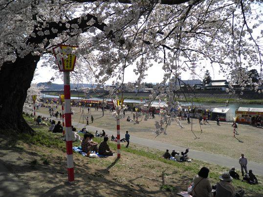 A14.04.15-31  白石川51.jpg