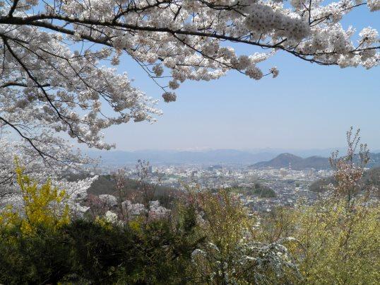 A14.04.16-11  花見山51.jpg