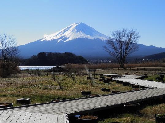 B12.23-11 富士17.jpg