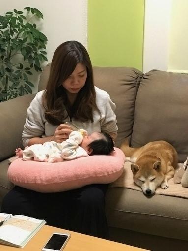 ちゃん2017-11-21  莉心 (383x510).jpg
